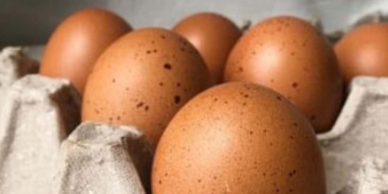 The Common Big Mistakes We All Make When Cooking Eggs!